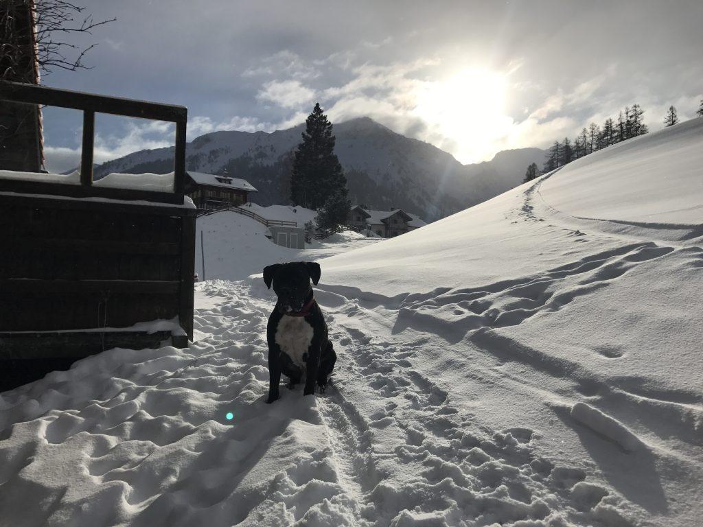 Hotel Alpina Mountain Resort & Spa , Tschiertschen, Chur, Schweiz